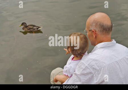 Little girl sitting on the lap of a man, watching a duck, Dresden, Saxony - Stock Photo