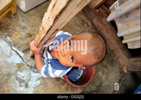 Boy in an indigenous community in a slum, Mexico City, Ciudad de Mexico, Mexico, Central America - Stock Photo