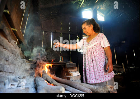 Elderly woman in a basic kitchen cooking on an open fire, Carayao, Caaguazú Department, Paraguay - Stock Photo