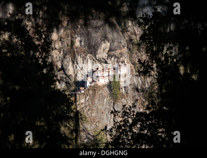 Taktsang Palphug Monastery (Tigers Nest Monastery) framed by forest foliage