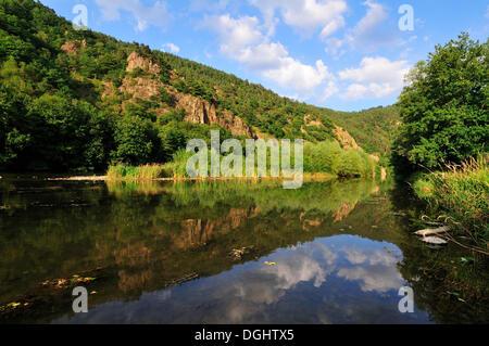 Reflections in the calm waters of the upper Loire River, Gorge de la Loire, Haute-Loire department, Auvergne, France - Stock Photo