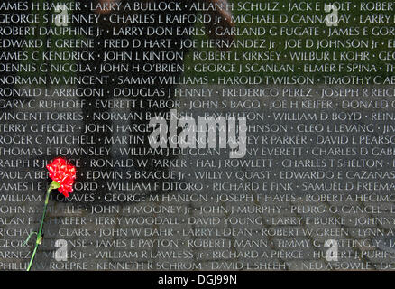 Red carnation in front of a tablet with the names of fallen US soldiers, National Memorial to those killed in the - Stock Photo