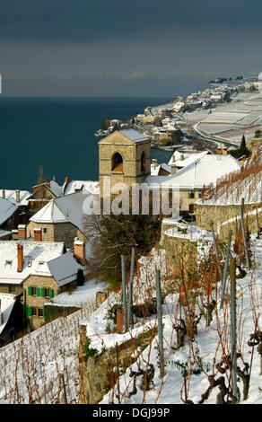 Municipality of Saint-Saphorin between snow-covered vineyards and Lake Geneva, Lac Leman, in the UNESCO World Heritage - Stock Photo
