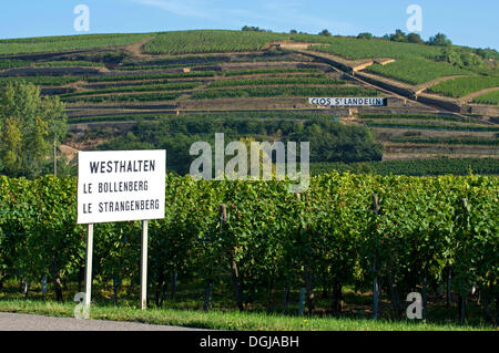 Entrance sign of Westhalten with references to the vineyards of Le Bollenberg and Le Strangenberg in front of the - Stock Photo