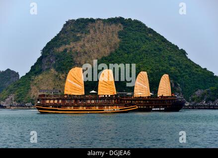 Junks in Halong bay, Vietnam, Southeast Asia - Stock Photo