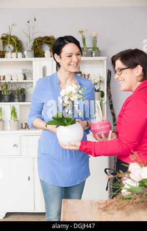 Mid adult woman choosing plant with florist - Stock Photo