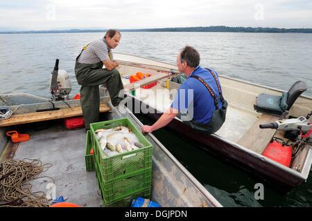 Two fishermen chatting on Lake Starnberg, Fuenfseenland area, Upper Bavaria, Bavaria - Stock Photo