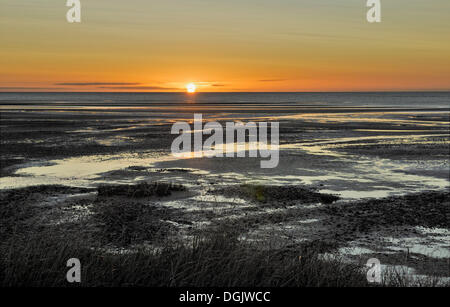 Sunrise at low tide, Collingwood, Golden Bay, South Island, New Zealand - Stock Photo
