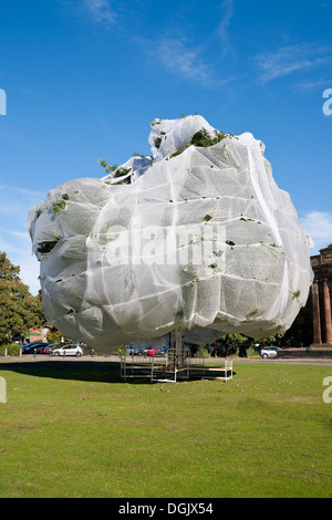 Large tree covered in horticultural fleece to protect it England UK United Kingdom GB Great Britain - Stock Photo