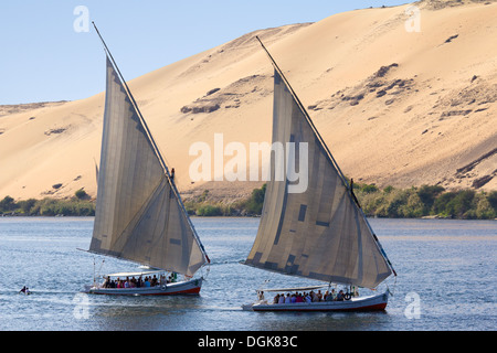 Feluccas sailing on The Nile. - Stock Photo