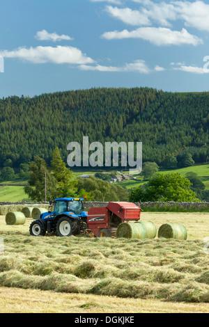 Harvesting near Burnsall in the Yorkshire Dales.