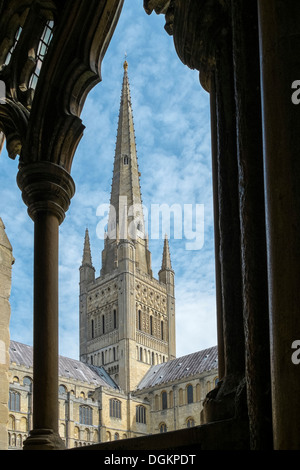 The tower of Norwich Cathedral seen through one of the cloister arches. - Stock Photo