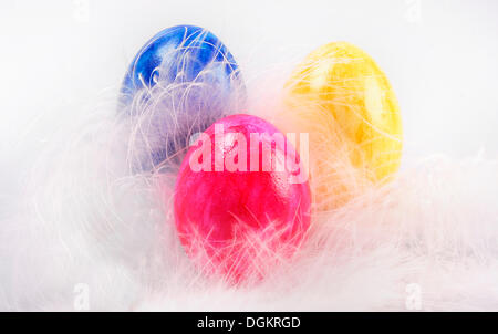 Colorful Easter eggs lying on white feathers - Stock Photo