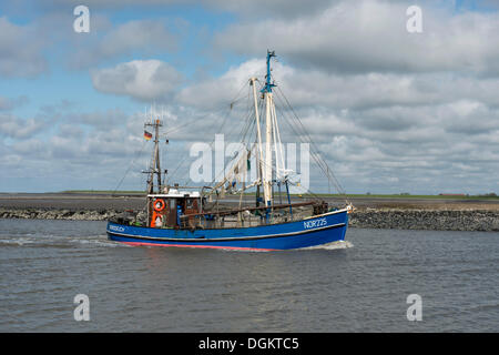 Shrimp cutter, Nordmeer, NOR 225, in motion, Lower Saxony Wadden Sea, Norddeich, Norden, East Frisia - Stock Photo