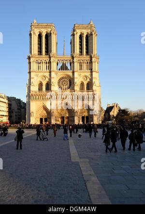 West façade, Cathedral of Notre-Dame de Paris, Ile de la Cité, Paris, France, Europe - Stock Photo