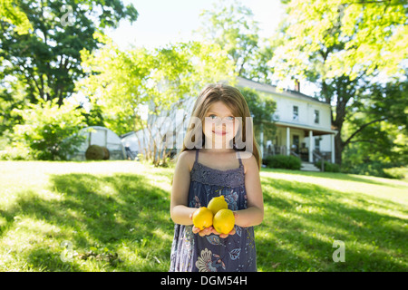Outdoors in summer. On the farm. A girl in the garden holding three large lemon fruits in her hand. - Stock Photo