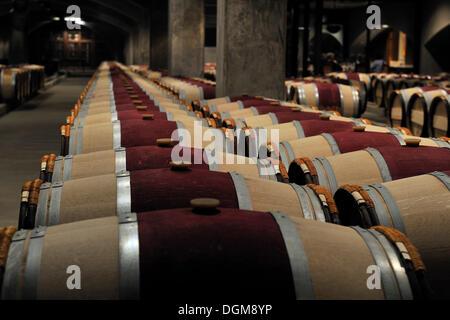 French oak barrels in the aging cellar of the Robert Mondavi Winery, Napa Valley, California, USA - Stock Photo
