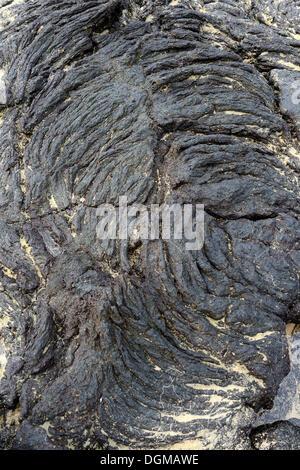 Lava rock formations, Isabela Island, Galapagos Islands, UNESCO World Heritage Site, Ecuador, South America - Stock Photo