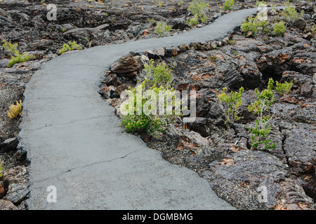 paved pathway lava fields Craters of the Moon national monument preserve Butte County Idaho Sagebrush plants growing. - Stock Photo