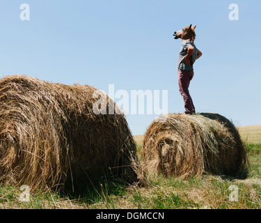 A man wearing a horse mask, standing on a hay bale, looking out over farmland. - Stock Photo