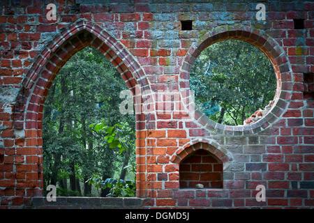 Window in a brick wall, ruins of Boitzenburg Abbey, Boitzenburg, Uckermark, Brandenburg, Germany - Stock Photo