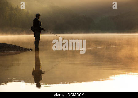 A fly fisherman standing on the shore of the Obernau reservoir at sunrise, Netphen, North Rhine-Westphalia - Stock Photo