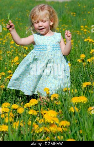 Little girl, 2 years, swinging in field of dandelion - Stock Photo
