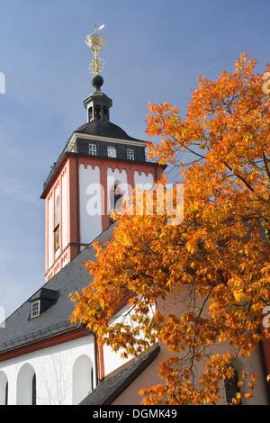 Kroenchen sculpture on the steepletop of Nikolaikirche Church, landmark of Siegen, Siegen, Siegen-Wittgenstein district - Stock Photo