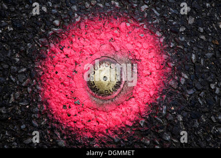 A fixed measurement point for surveyors, recessed in the pavement and marked with pink spray paint - Stock Photo
