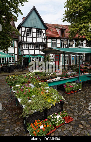 Weekly market in front of historic half-timbered houses, Kirchplatz square, Bad Essen, Osnabruecker Land region, - Stock Photo