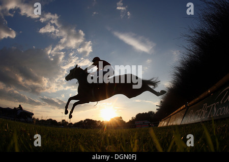 Hannover, Germany, silhouette, horse and jockey jumping over a hurdle - Stock Photo
