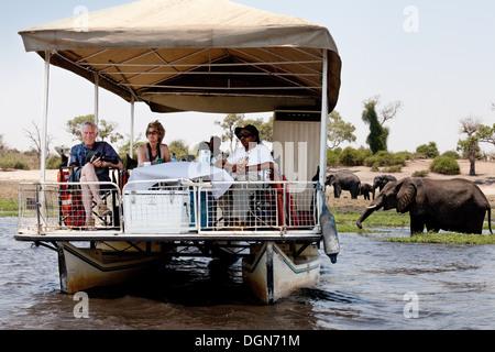 Tourists on a luxury boat safari with elephants, Chobe River, Chobe National park, Botswana Africa - Stock Photo