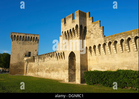 City walls, Avignon, Provence, Region Provence-Alpes-Côte d'Azur, France - Stock Photo