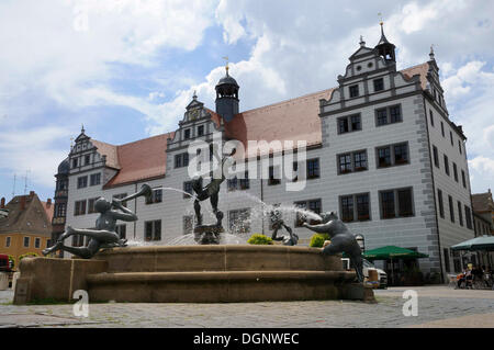 Market square with aountain and town hall, Torgau, Landkreis Nordsachsen county, Saxony - Stock Photo