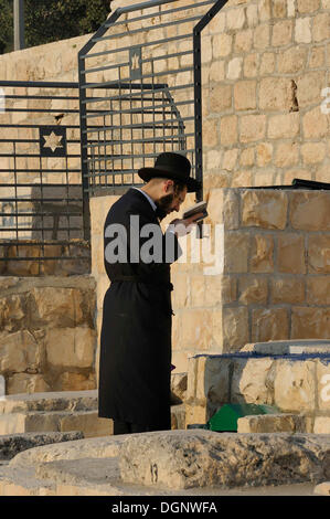 Orthodox Jew during evening prayer in the Jewish cemetery on the Mount of Olives, Jerusalem, Israel, Middle East - Stock Photo