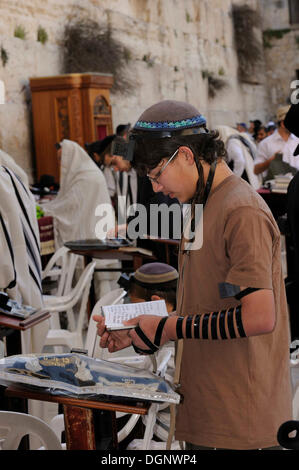 Orthodox Jewish boy reading a prayer book with a tefellin on his forehand and phylacteries on his arm, Torah cabinet - Stock Photo