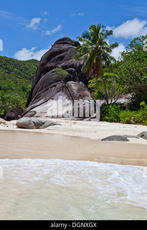 Granite rocks and a Coconut Palm (Cocos nucifera) on the beach of Anse du Riz in Baie Ternay Marine National Park, - Stock Photo