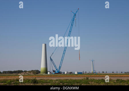 Construction of an Enercon E82 wind turbine, Windpark Grosshofen wind farm, Marchfeld, Lower Austria, Austria, Europe - Stock Photo