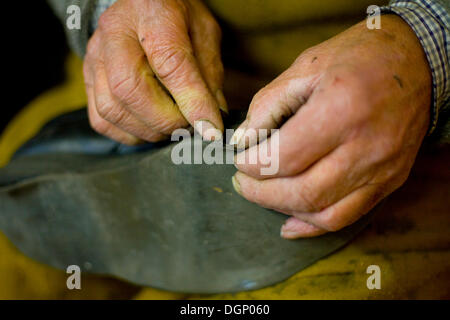 Shoemaker working - Stock Photo