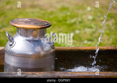 Milk cans in a well on a mountain pasture, South Tyrol, Italy, Europe - Stock Photo