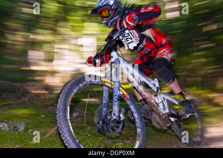 Downhill mountain bike race from Mt Plose, South Tyrol, Italy, Europe - Stock Photo