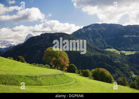 Landscape in autumn, Val Gardena, Dolomites, Trentino-Alto Adige, Italy, Europe - Stock Photo