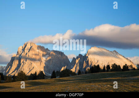 Seiser Alm with a view to Langkofel and Plattkofel, Dolomites, Trentino-Alto Adige, Italy, Europe - Stock Photo