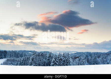 Winter landscape at the Black Forest High Street, at sunset, Black Forest, Baden-Wuerttemberg - Stock Photo