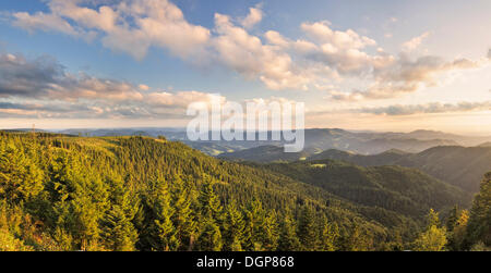 View of the southern Black Forest at sunset from the hiking trail around Schliffkopf mountain in the Black Forest - Stock Photo