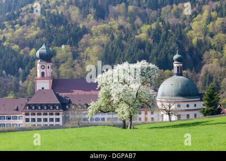 St. Trudpert's Abbey, Muenstertal Valley, Black Forest, Baden-Wuerttemberg - Stock Photo