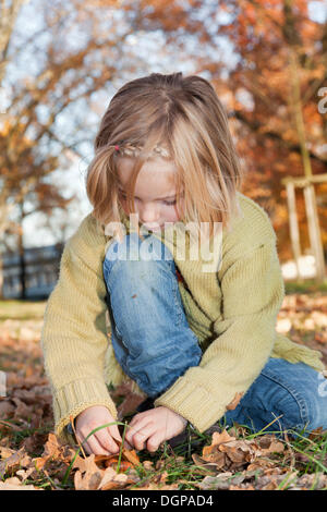 Six-year-old girl collecting acorns in an autumn park - Stock Photo