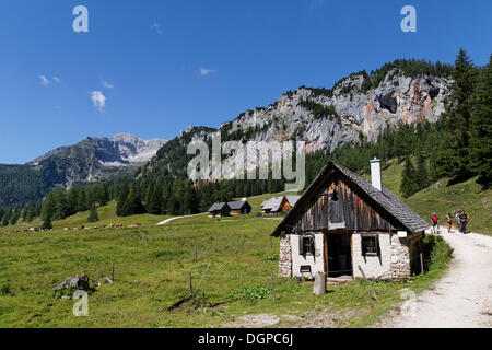 Wurzeralm alp, Spital am Pyhrn, Pyhrn-Priel, Traunviertel region, Upper Austria, Austria, Europe - Stock Photo