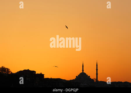 Fatih Mosque at sunset, Fatih district, Istanbul, Turkey, Europe - Stock Photo