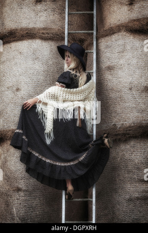 a beautiful girl on a ladder in a haystack - Stock Photo